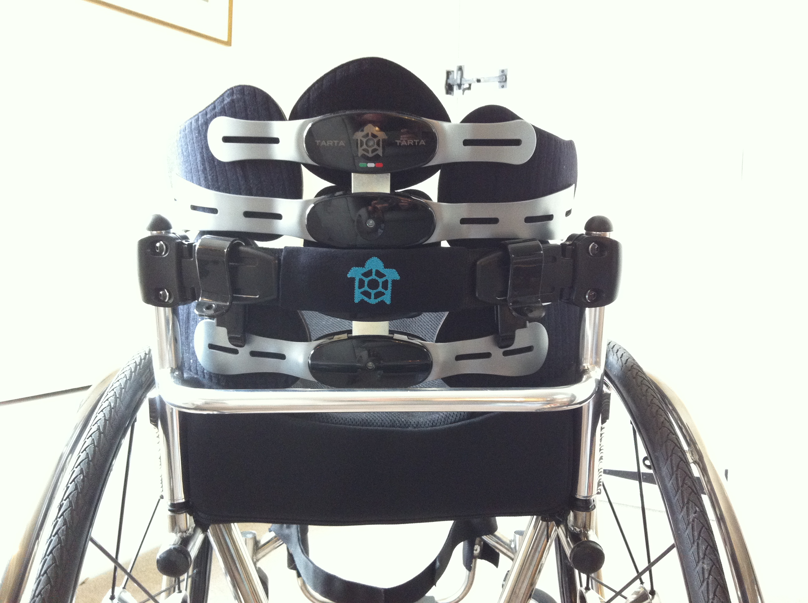 TARTA wheelchair backrest BACK VIEW (Full Size)
